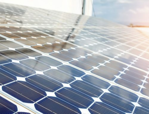 TerraPro Solutions Provides Closing Support to BayWa r.e. for Fern Solar Project